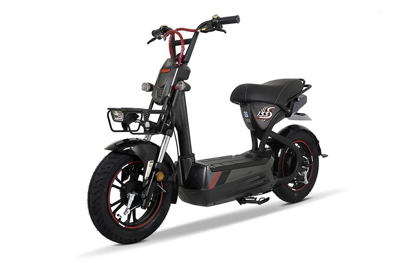 Tư vấn nên mua xe đạp điện loại nào tốt rẻ nhất hiện nay 1