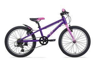 (Review) Xe đạp trẻ em loại nào tốt nhất (2021): Royal Baby, Jett Cycles, Asama hay Giant?