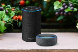 Loa thông minh thương hiệu Amazon